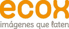 logo ecox